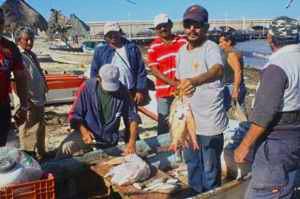 010613 Otro norte afectaría la pesca en Yucatán