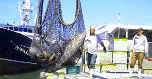 012214 Contribuye pesquería de atún a garantizar suficiencia alimentaria