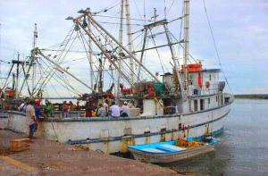 012314 Asaltan barco con 850 kilos de camarón en Mazatlán