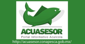 Acuasesor logo