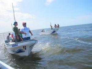 cacerìa de pepineros en las costas de Yucatán