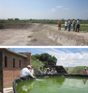 081314 Acuacultura en zonas áridas